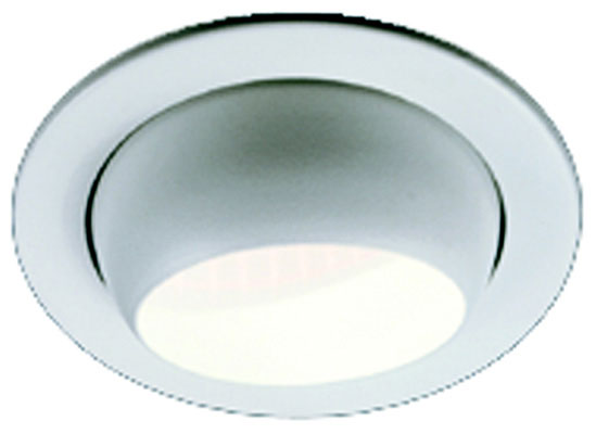 "4"" Line Voltage PAR/R20 Adjustable Eyeball Recessed Lighting Trim, White"